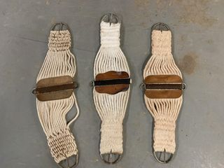 3   Cinch Straps