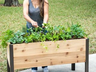 Gardener s Supply 2  x 4  Elevated Cedar Planter Box