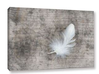 The Gray Barn Cora Niele s White Feather Gallery Wrapped Canvas Art
