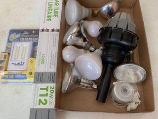 lights and light bulbs