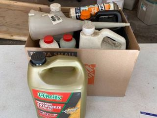Assorted car and garage chemicals