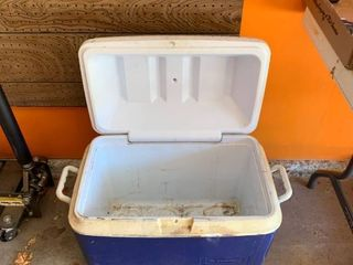 Rubbermaid cooler needs cleaned
