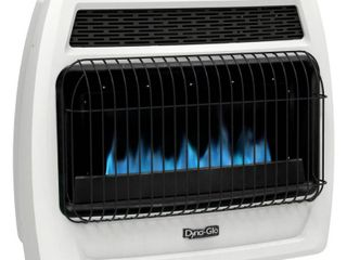 Dyna Glo BFSS30NGT 2N 30 000 BTU Natural Gas Blue Flame Vent Free Thermostatic Wall Heater