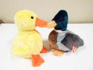 Beanie Buddies Jake and Quackers