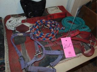 Approx 10 pcs of horse equip  saddle pad  halters