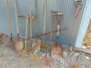 1 lot of pitch forks  shovels   other