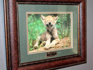 Framed Double Matted  In Celebration of Wild Penance  By Sandi Ault 18 5  x 16