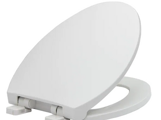 Aqua Source Elongated Toilet Seat