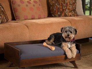Doran Mid Century Rectangle Acacia Wood Dog Bed by Christopher Knight Home Retail 83 99