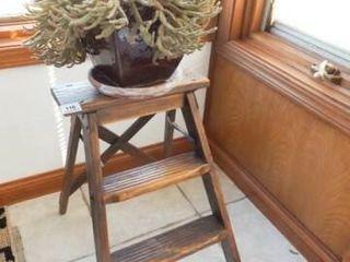 ladder Plant Stand  Succulent Plant