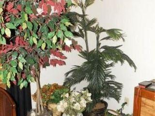 Floral Arrangements  Baskets  Trees