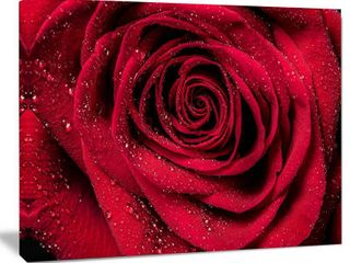 Red Rose Petals with Rain Droplets   Floral Canvas Art Print  Retail 167 99