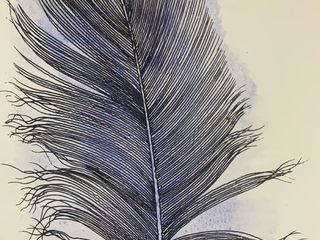 Homepaint Hand Painted Wall Art Feather