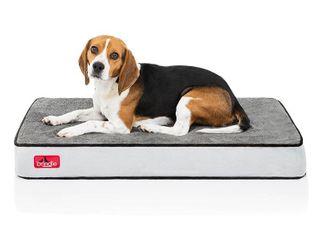 Brindle 4  Plush Memory Foam Orthopedic Dog Bed