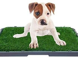 BINGPET Dog Grass Training Potty Pad