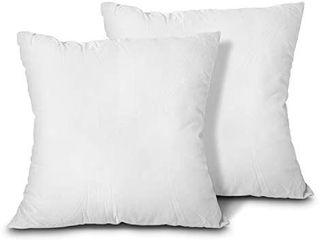 EDOW Throw Pillow Inserts  Set of 2 lightweight Down Alternative Polyester Pillow