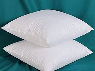 Set of 2 22x22 Decorative Throw Pillow Inserts Down Feather Pillow Inserts  100  Cotton Fabric  Square  White