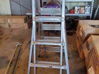 Werner 21  ladder