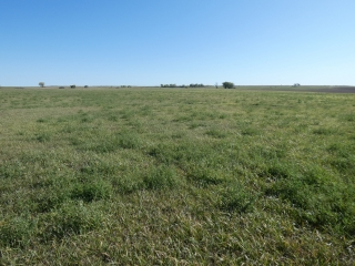 77.7 +/- Acres - Mercer County, ND