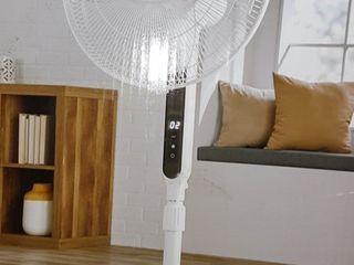 White Pelonis Standing Fan