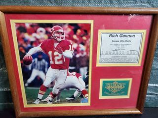Rich Gannon Pro total Stats and Achievements and Awards   Front Row Collectible