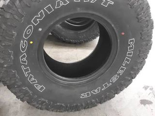Patagonia M T Milestar Tire