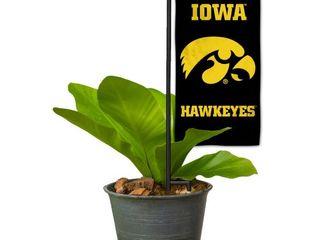 Garden Flag Stake and Hawkeye Flag