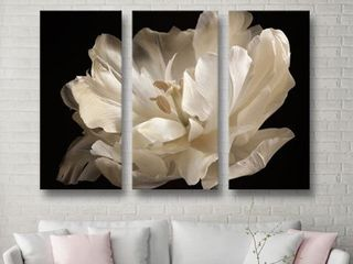 ArtWall Cora Niele s White Tulip 3 piece Gallery Wrapped Canvas Set  Retail 99 99