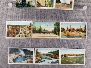 lot of 10 Vintage Postcards   Yellowstone National Park   Postmark 1953