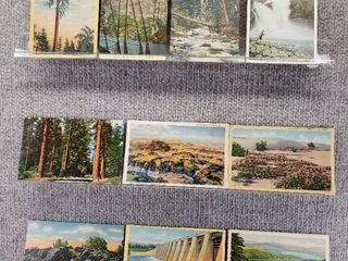 lot of 10 Vintage Postcards   American landscape