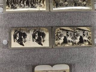 lot of 5 Stereograph Cards   Michigan  Florida  Norway   Farming   Hunting   Keystone View Company