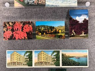 lot of 10 Vintage Postcards   Florida   Postmark 1955 Scenic landscapes