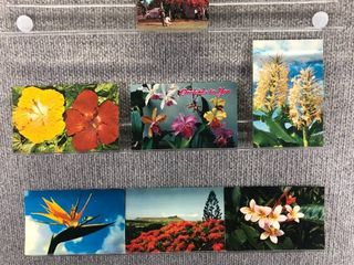 lot of 10 Vintage Postcards   Hawaii   Flowers