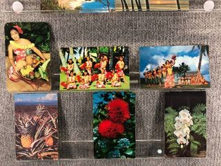 lot of 11 Vintage Postcards   Hawaii   Flowers   Native People