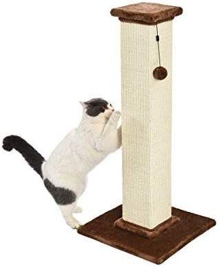 Amazonbasics Premium Cat Scratching Post   large  Wood