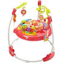 Fisher Price Pink Petals Jumperoo with lights   Sounds