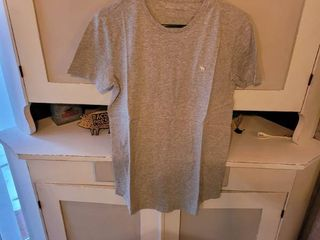 ABERCROMBIE   FITCH SOFT A F TEE SIZE S COlOR GREY