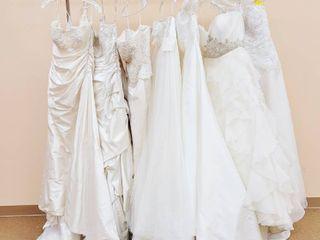 7 Designer Bridal Gowns   Pronovias  Maggie Sottero  Demetrios  Casablanca Bridal