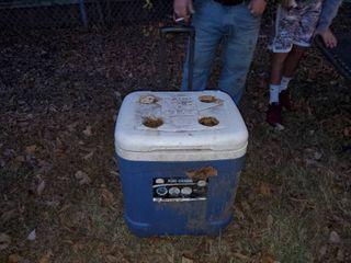 Blue Igloo Ice Cube Cooler
