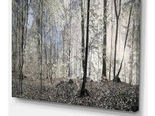 DesignArt Dark Morning in the Forest