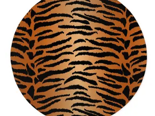 TIGER NATURAl Area Rug by Kavka Designs Retail 204 49