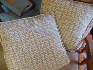2 Throw Pillows   very Clean