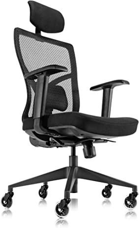 Ergonomic Mesh Office Chair with Roller Blade Wheels  Ridiculously Comfortable High Back Computer Desk Chair and Fully Adjustable  Black