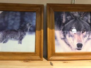 2 Framed Wolf Photos
