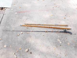 2 Cane Poles and Rod and Reel
