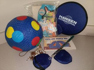 Childrens Puzzle and Kickball with Assorted Toys