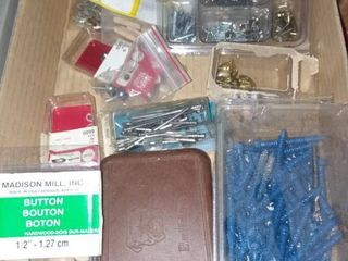 Assorted Screws and Nails