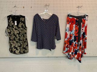3  NWT Size Medium Pieces   2 Blouses  1 Skirt  Combined MSRP  114 99