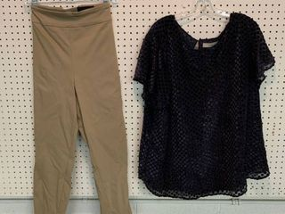 2  NWT Size 24W Pieces   1 Blouse  Flocked Velvet Dot So Pretty    1 Pair Pants  Combined MSRP  104 99