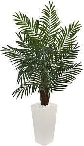palm tree plant white planter as is